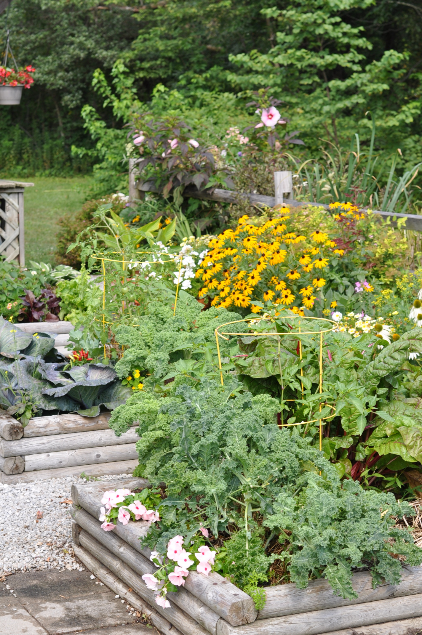 How to enhance your garden with gravel for Garden safe take root