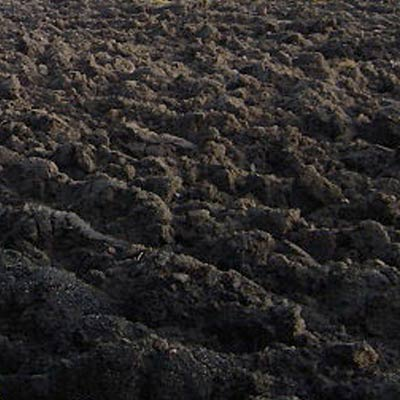 Image gallery loam soil for Different types of soil wikipedia